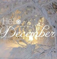 Hello December ☃ : QUOTATION – Image : Quotes Of the day – Description Hello December Sharing is Power – Don't forget to share this quote ! Hello December Quotes, Hello December Images, Welcome December, Hello January, Happy December, Happy Week, December 2014, Seasons Months, Seasons Of The Year