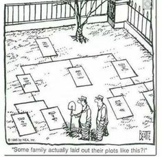 Want a unique family tree? The generations of your living family tree are shown as naturally connecting branches in rings of time. Genealogy Quotes, Genealogy Chart, Family Genealogy, Genealogy Search, Genealogy Websites, Genealogy Forms, Family History Quotes, Family Quotes, Quotes Quotes
