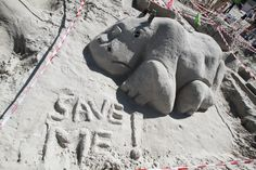 A sandcastle to commemorate the plight of the rhino at the Valley Pre-Primary Sandcastle Competition.  More info here: http://blog.galetti.co.za/2013/04/valley-pre-primary-sandcastle-competition-2013/