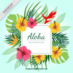 Discover the best free resources of Aloha Hawaiian Flowers, Tropical Flowers, Hawaiian Background, Hawaian Party, Hawaiian Designs, Estilo Tropical, Tropical Party, Plant Illustration, Backgrounds Free