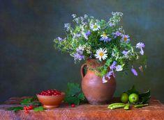 Imágenes de flores y rosas para escribir tus propios mensajes   Banco de Imagenes (shared via SlingPic)