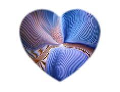 """Kindness can open a """"shuttered heart"""""""