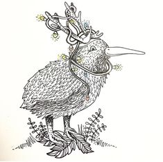 Xmas Kiwi, illustration, illustrator, pen and ink, design, sketch, designer, black and white drawing.