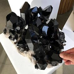 An incredible Smokey Quartz Cluster from California! Minerals And Gemstones, Rocks And Minerals, Crystal Aesthetic, Rock Decor, Beautiful Rocks, Mineral Stone, Rocks And Gems, Crystal Collection, Stones And Crystals