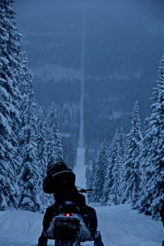snowy long straight road of boundary line between Norway and Sweden.