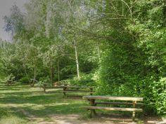 Parc des sports et des loisirs du Grand Godet à Villeneuve-le-Roi, Orly et Choisy-le-Roi - Table de pique-nique pour le goûter