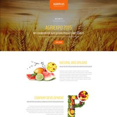Agriculture Responsive Landing Page Template Page Template, Templates, Organic Company, Agriculture, Landing, Logo Design, Rice, Check, Stencils
