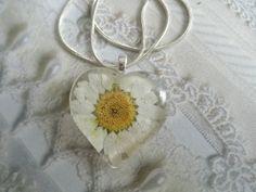 He Loves Me He Loves Me NotBright White Daisy by giftforallseasons, $24.00