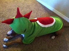 Yoshi from Super Mario Brothers Pet costume