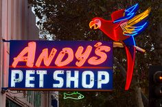 Andy's Pet Shop. The best pet store in the San Jose, CA area in the 1950s and 1960s