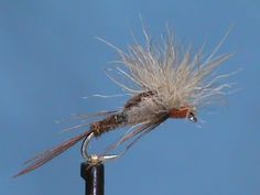 Small Game Emerger - Hook: Curved Shank #12 - #18   Thread: Rusty Brown  Tail/Abdomen: Ringneck Pheasant Tail    Wing/Thorax: Snowshoe Rabbi...