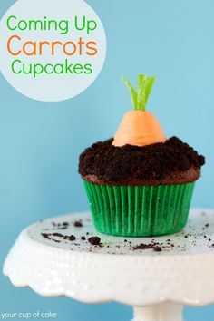 Coming Up Carrots Cupcakes by @Liz Mester Mester Huereque's Cup of Cake