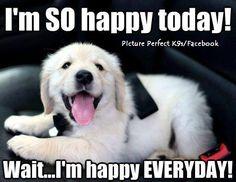 So happy   Happy Happiness Quotes Inspiration Gratitude Wisdom Joy Poster Posters Motivation Quote Inspiring Motivating Grateful