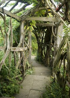 Witch Garden:  #Witch #Garden ~ Living tunnel in Furzey Gardens, Hampshire, England (by Steve Franklin).