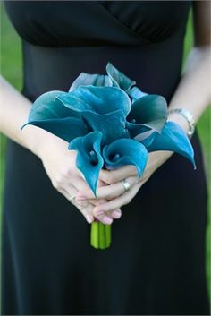 teal calla lily pinning nor for the bouquet but because this is another flower you could use in the centerpiece.