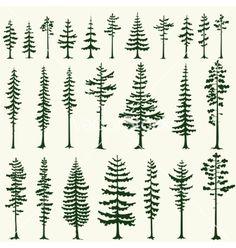 super ideas evergreen tree tattoo back ink - Modern Pine Tattoo, Raven Tattoo, Evergreen Tree Tattoo, Evergreen Trees, Pine Tree Silhouette, Silhouette Vector, Tree Silhouette Tattoo, Kiefer Silhouette, Kiefer Tattoo