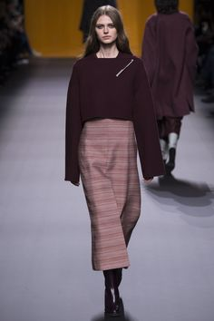The Hermes Fall 2016 show could directly be described as the falling leaves in Fall; with every shade from oxblood red, to gold, next season's collection is set to be a manifestation of mother natu...