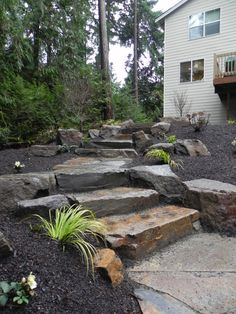 Woodland garden with stone steps and boulders