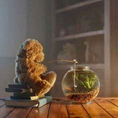 50 Unusual Indoor Photography Ideas You May Try at Home Indoor Photography, Toys Photography, Children Photography, Photography Ideas, Bear Fishing, Teddy Bear Pictures, Cute Teddy Bears, Tatty Teddy, Bear Doll