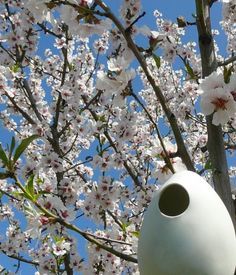 "porcelain bird house ""Hanami""  nido per uccelli in porcellana by AtelierGilet"