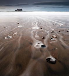 Sea foam at Bass Rock, Firth of Forth, Scotland - Telegraph