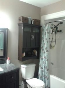Rooms for Rent St. Rooms For Rent, St John's, Newfoundland, Bathroom Medicine Cabinet, Mirror, Country, Stuff To Buy, Image, Furniture