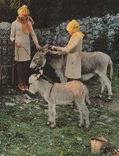 October 1969. 'Soft-stroke heather knits befriend two fuzzy fans.'