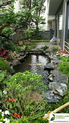 1 million+ Stunning Free Images to Use Anywhere Fish Ponds Backyard, Backyard Water Feature, Backyard Pool Designs, Small Water Gardens, Fish Pond Gardens, Small Japanese Garden, Portland Japanese Garden, Garden Pond Design, Japan Garden