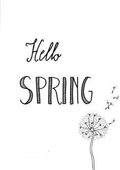 Free printable for the home. Black and white. Hello spring with dandelion. Gratis printable voor in huis. Zwart wit. Voorjaar printable met paardebloem.