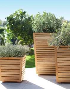 Teak Planters with plants on a patio, from Target