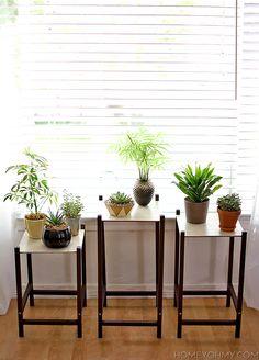 DIY Modern Plant Stands