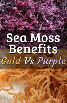 Yellow Golden Vs Purple Sea Moss - Learn the benefits, differences, and several ways how to use purple and gold irish sea moss. Health Trends, Health Tips, Dr Sebi Diet, Seamoss Benefits, Health Benefits, Dr Sebi Recipes, Food Shopping List, Alkaline Diet Recipes, Vegan Recipes