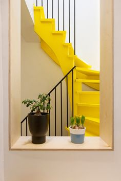 Bright as Sunshine :: Yellow Decor   Trend Center by Rugs Direct