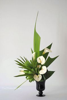 White Calla and Anthuriums