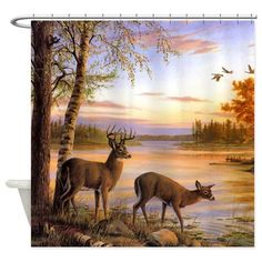 Country Deer Scene Shower Curtain
