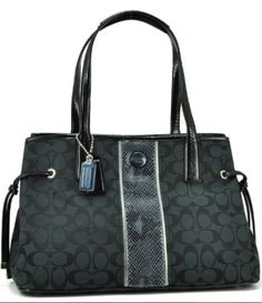 My large carry all Coach bag, another gift from Hubby.