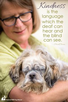 Kindness is the language which the deaf can hear and the blind can see. #NMDR #rescue