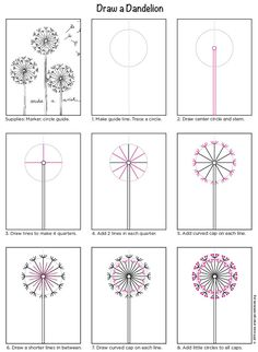 How to draw a dandelion. PDF tutorial. Art Projects for Kids .Org #howtodraw #dandelion