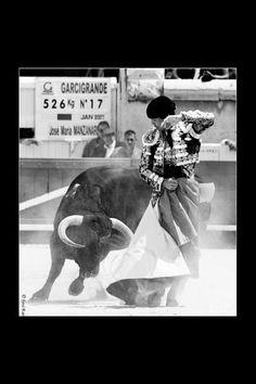 fotografía de José Maria Manzanares en Nimes. Foto Joserra Lozano