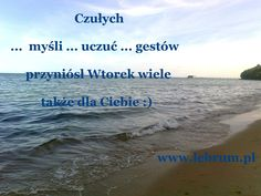 Wtorek Czułych Gestów ... Przemyślenia o poranku : http://pierwszamysl.blogspot.com/ o miłosnych perypetiach : http://iruchna.blogspot.com o szukaniu pracy : http://bez-etatu.blogspot.com/ Widok z okna i komentarz poranka: http://jakimon.blogspot.com