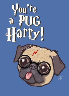 Image result for Harry potter pug art