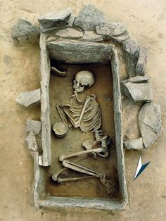 Bell Beaker burial - mtDNA study shows central European hunter-gatherers were edged out by neolithic farmers originating in anatolia (turkey)