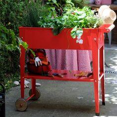 Kweektafel op wiel - rood - Kweektafels - De Wiltfang