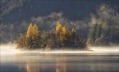 """Highly commended, Seasons – """"Island Mist"""" by Robert Fulton"""