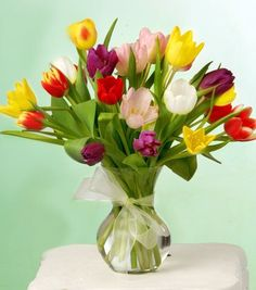 Blooming Tulips-Vibrant fresh cut tulips will make a cheery impression wherever they are displayed. We have selected the freshest tulips in a variety of mixed colors. This bouquet is perfect for any occasion. #SpringFlowers #Tulips #SchaafFloral #MinneapolisFlowers