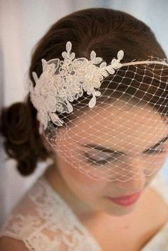Birdcage Veil With Headband + Lace Appliqué Detail