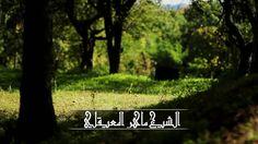 الشيخ ماهر المعيقلي - سورة الهمزة - Maher Al Mueaqly - Surah Al-Humaza -...