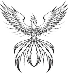 Phoenix Drawings | Showing Gallery For Easy Phoenix Drawing