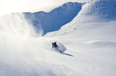 Scottish Referendum, Voting Today, Gone Tomorrow, About Uk, Snowboard, Mount Everest, Skiing, Sports, Travel