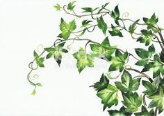 A4 groß Schablone Floral Bambus Pflanze Blätter basteln malen airbrush D002